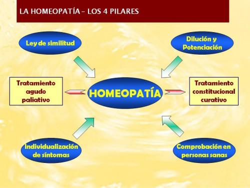 Los 4 pilares homeopatía